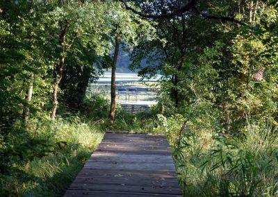 Natura-Swaderki (6)